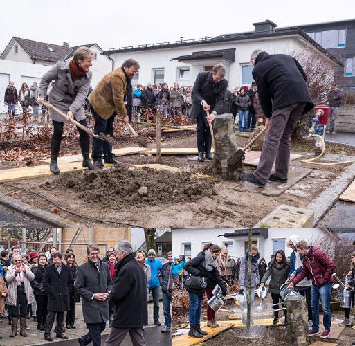 Eichenpflanzung zu Ehren von Joseph Beuys, seit 2015