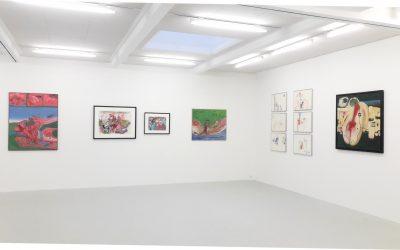 Ausstellung UWE LAUSEN im Kunstraum Innsbruck, 2018