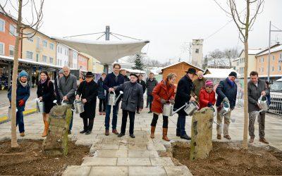 Eichenpflanzung zu Ehren von Joseph Beuys