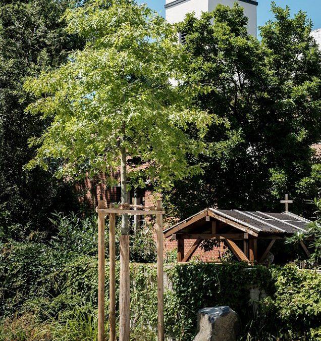 """18-05-2019: Rundgang """"Wer nicht denken will, fliegt raus"""": Joseph Beuys und seine Schüler"""