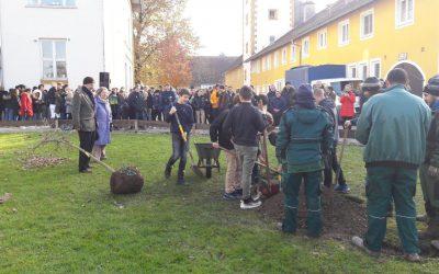 20. November 2019: Schule Schloss Stein: Eichenpflanzung zu Ehren von Joseph Beuys