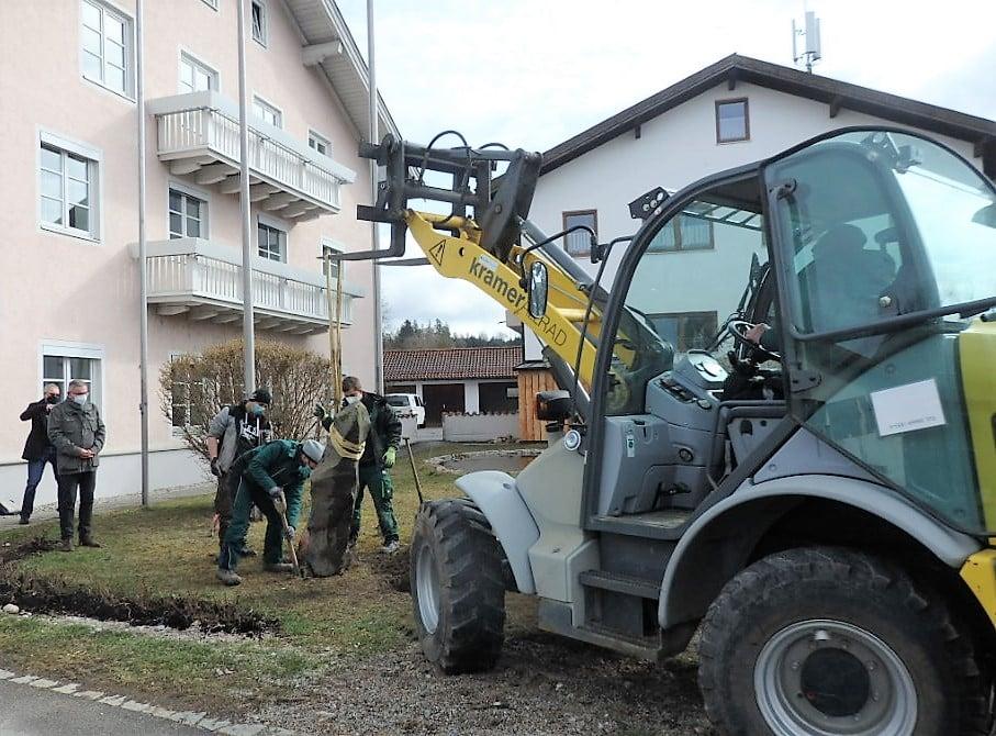 15-03-2021: Eichenpflanzung zu Ehren von Joseph Beuys in Altenmarkt a.d. Alz