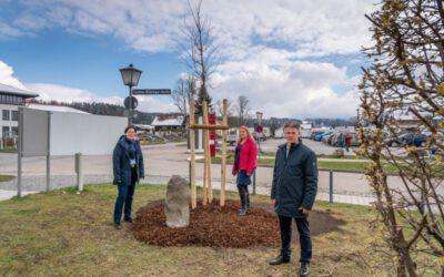 14-04-2021: Eichenpflanzung zu Ehren von Joseph Beuys in Miesbach